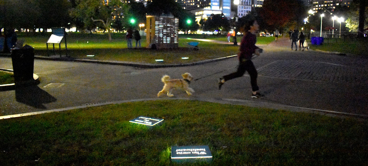 """Janet Zweig's """"What Do We Have in Common?"""" on view at Boston Common, Oct. 11, 2021. (©Greg Cook photo)"""